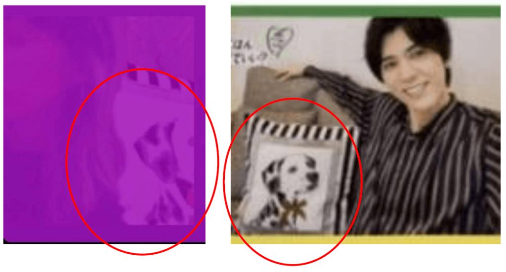 ナナヲアカリの「裏アカ匂わせ?」疑惑画像その①クッション