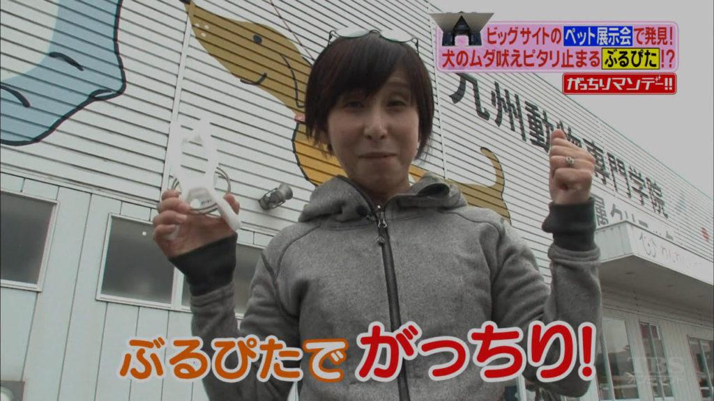 大山田真美は『がっちりマンデー』に出演していた!