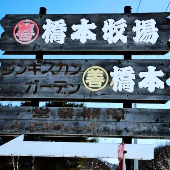 【橋本聖子の実家】北海道で牧場を経営で馬主!